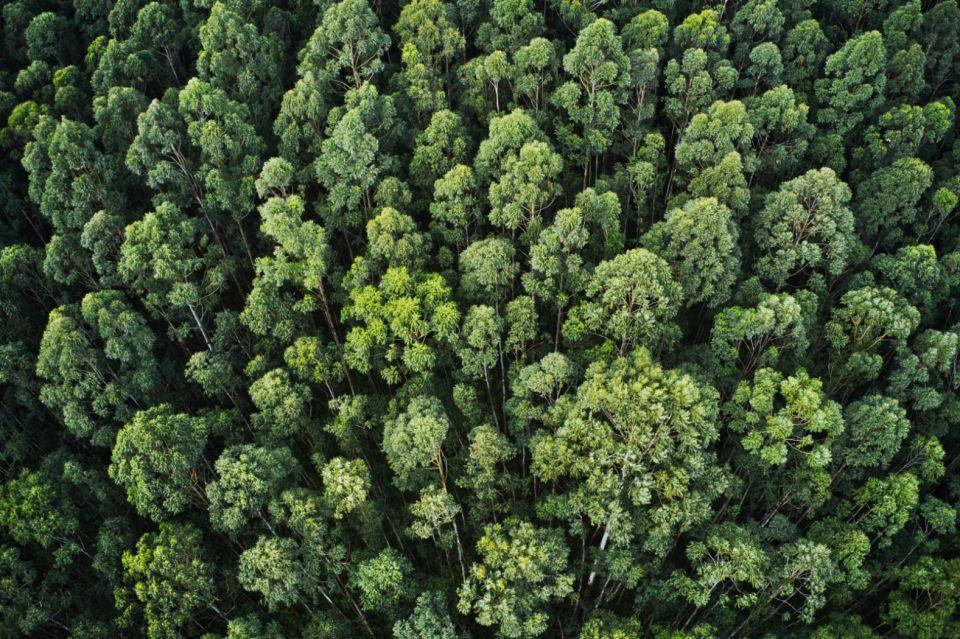 Zakon o zaštiti prirode